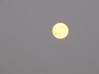 150731_moon.jpg