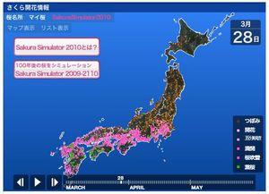 100328_sakura2.jpg