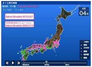 100328_sakura3.jpg