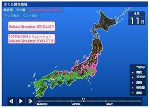 100328_sakura4.jpg